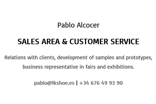 eng-pablo-alcocer-datos